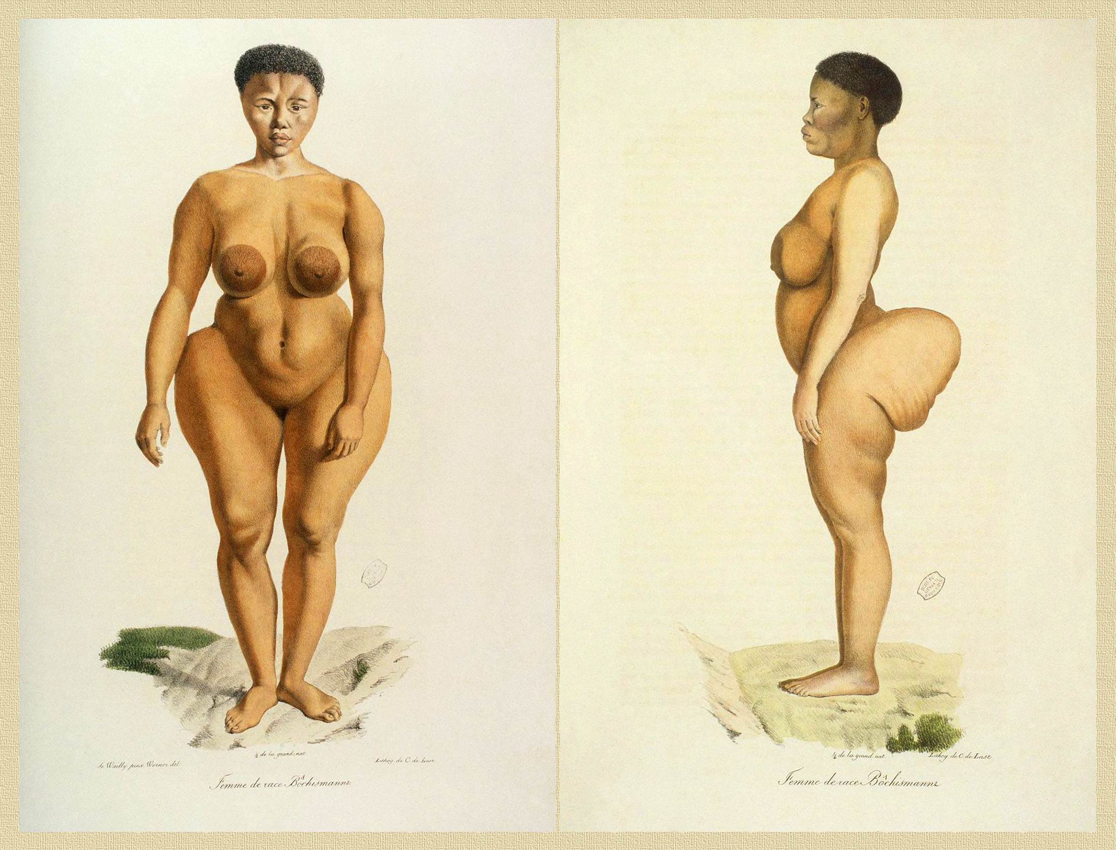 "Sawtche, named Sarah ""Saartjie"" Baartman in Europe (ca.1790 - 1815), called the Hottentot Venus, captured in South Africa, exhibited in Europe as a freak show attraction, forced into prostitution, studied as a specimen of ""Woman of race Bôchismann"" in 1815 by Étienne Geoffroy Saint-Hilaire and Georges Cuvier, which deduced theories on the inferiority of some human races. [Image and caption courtesy of Wikimedia]"